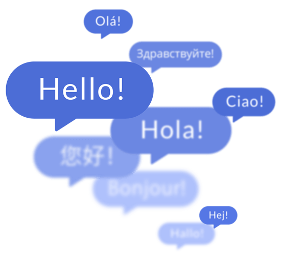 Language customization