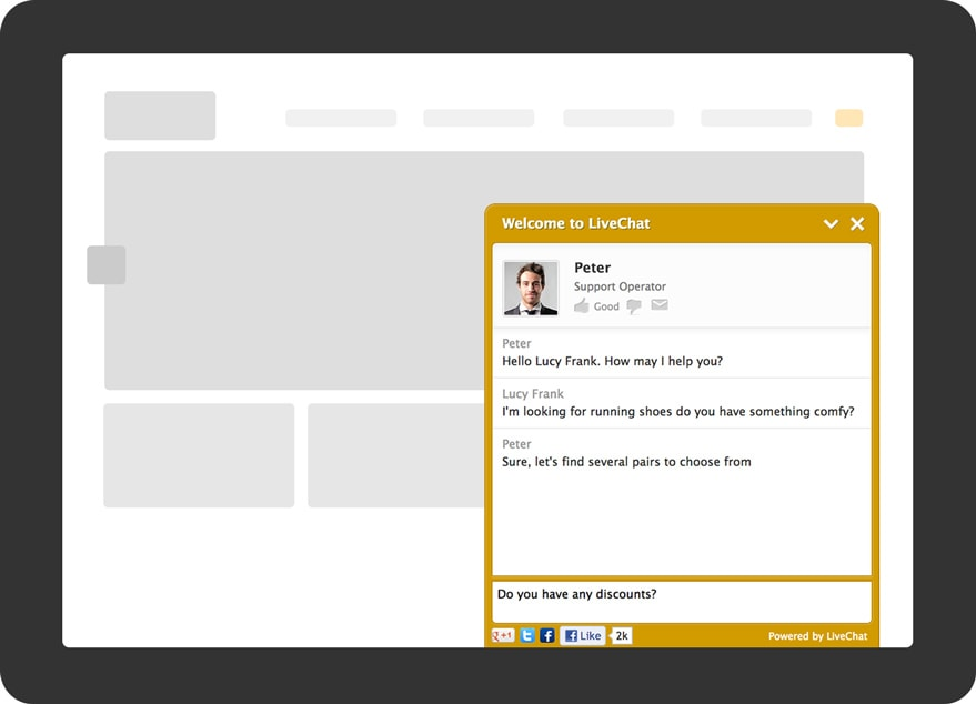 LiveChat visitor's view