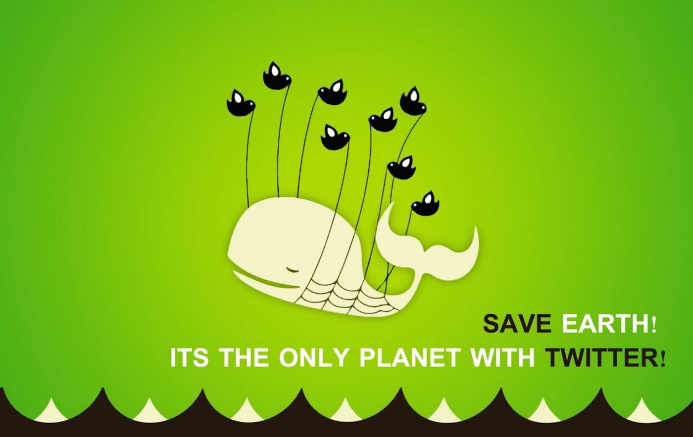 whale don't buy twitter followers