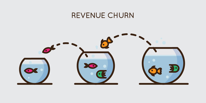 Revenue churn rate