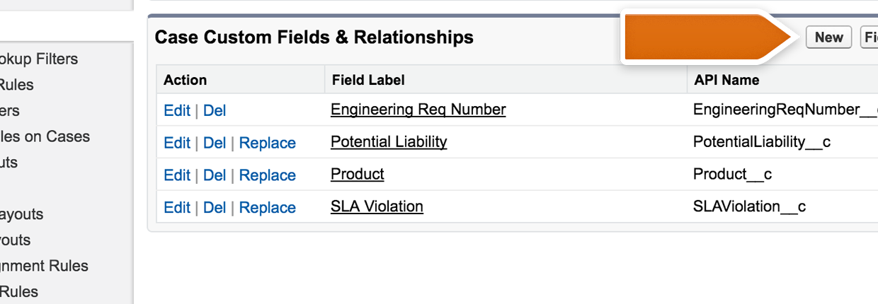 Salesforce Custom Fields