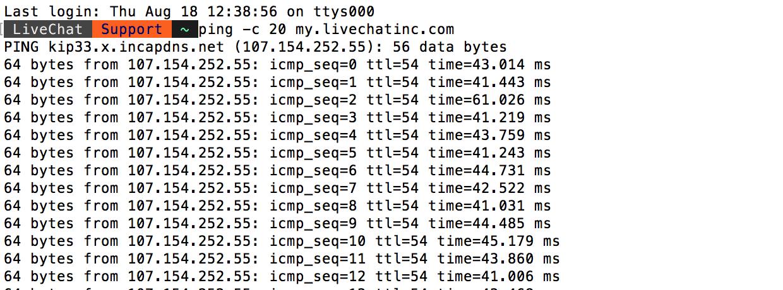 MacOS Terminal - ping results