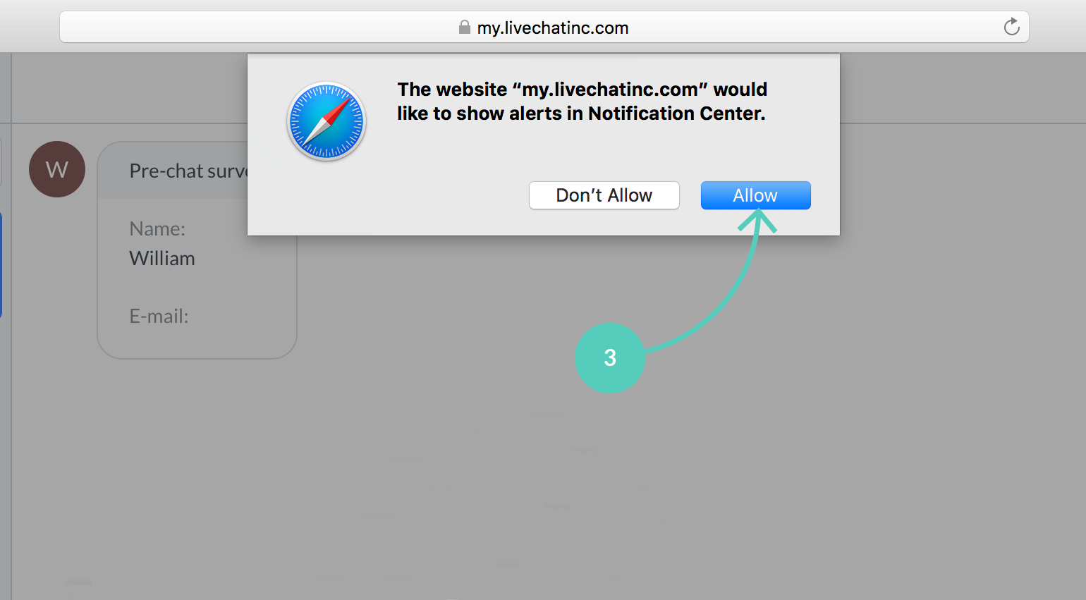 Allow LiveChat to show alerts in Safari