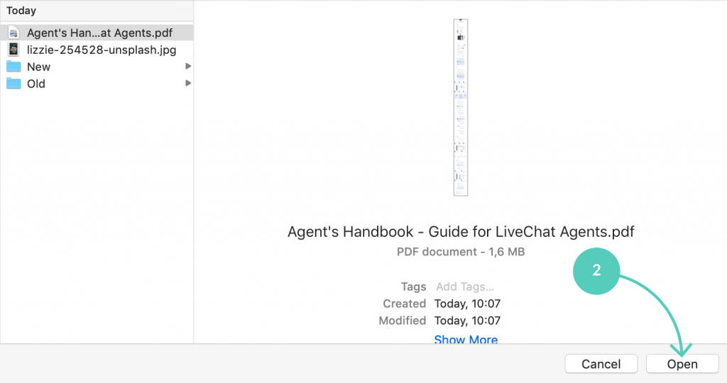Choose a file to send over LiveChat