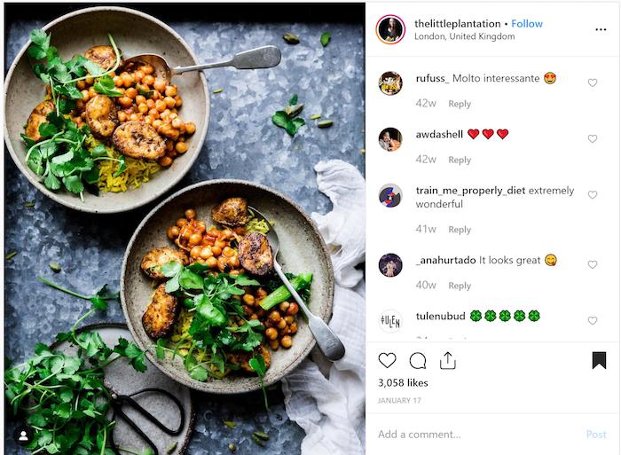 TheLittlePlantation Instagram Influencer